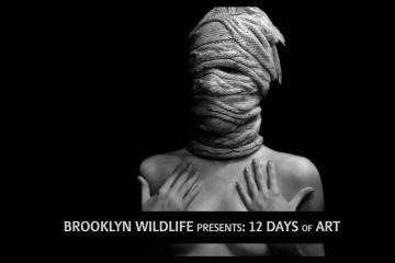 Brooklyn Wildlife