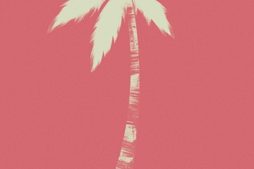 Jack Hughes Palm Trees