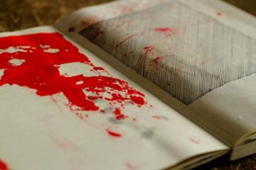 Tassia Bianchini The Notebook 2