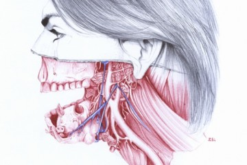 Quiet_Lunch_Magazine_Salvatore Zanfrisco_Anatomy of 2