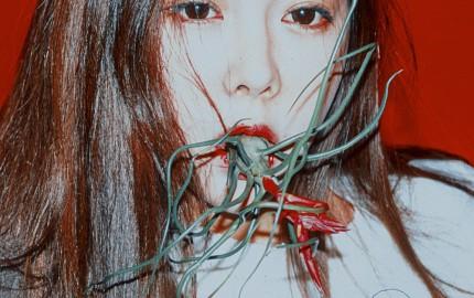 Quiet_Lunch_Magazine_Rala Choi_moho-series_1000