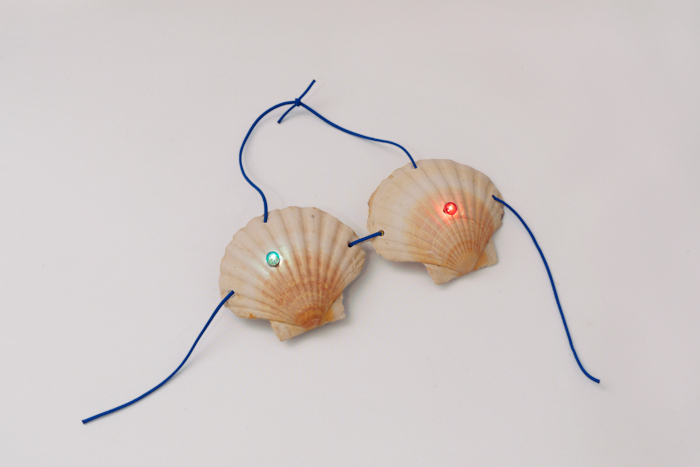 Seashell Bra, 2012. (Courtesy of Lindsay Lawson.)