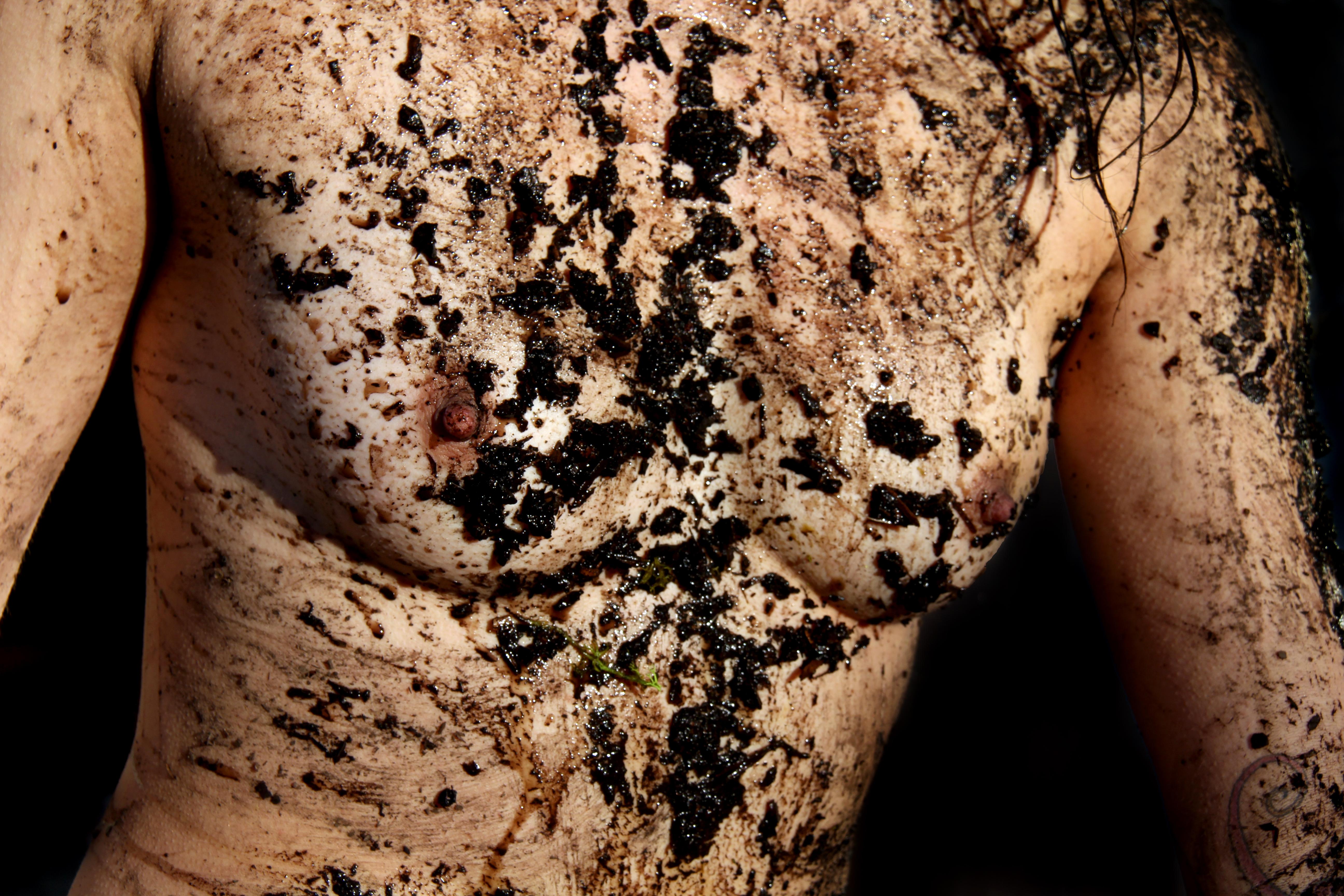 """Natacha Merrit, """"Botanist Landscape,"""" 2013."""