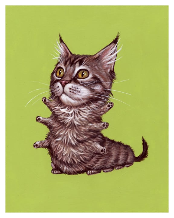 Quiet_Lunch_Magazine_Casey Weldon_mainecoon_1024x1024